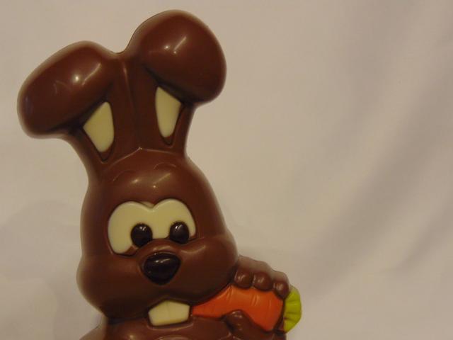 Filip, het konijntje in melkchocolade Close up contacteer ons contact