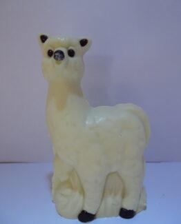 Pam, de alpaca in witte chocolade