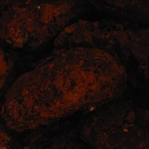 VDV Chocolaterie Truffels in pure chocolade
